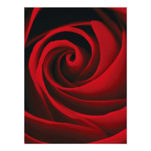 Red Rose Flower Swirl Classy Design Photo Print