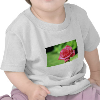 Red Rose flowers T-shirt