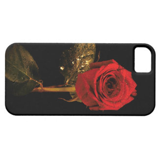 Red rose I-phone 5 case