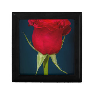 Red Rose Image Small Square Gift Box