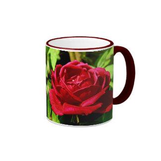 Red Rose in Bloom Mug