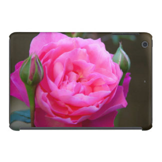 Red Rose In The Garden Of Hotel Carnavalet iPad Mini Covers