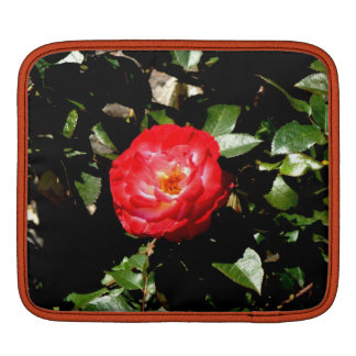 Red Rose Sleeve For iPads