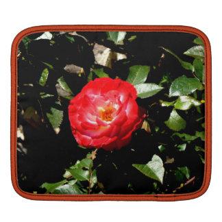 Red Rose iPad Sleeves