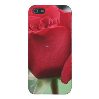 Red rose case for iPhone 5