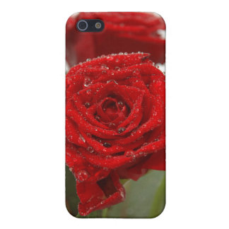 Red Rose iPhone Case 4 iPhone 5/5S Cases