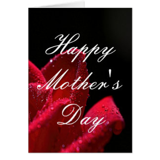 Red Rose Mother's Day Greeting Card