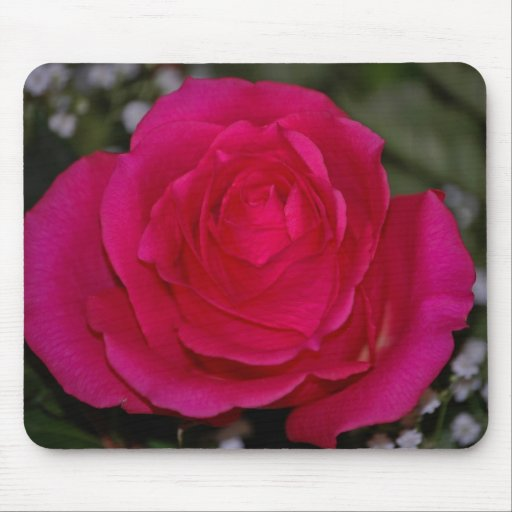 red rose mouse pad
