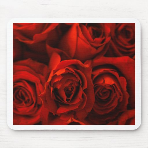 Red Rose of Love Mouse Pads