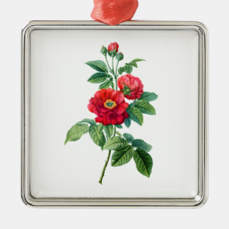 Red Rose of Province Silver-Colored Square Decoration