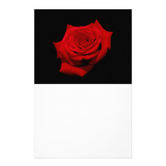 Red Rose on Black Background Stationery Paper