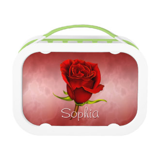 Red Rose on Red Lunch Boxes