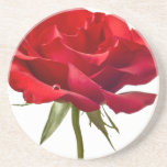 Red Rose on White - Customised Roses Template