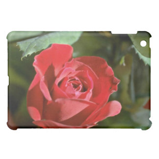 Red Rose, Partly Open flowers iPad Mini Cases