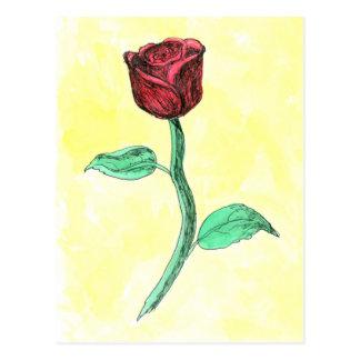 Red Rose. Postcard