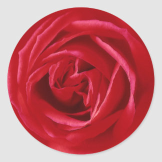 Red rose print round stickers