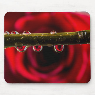 Red Rose Reflected in Water Drops Mouse Pad
