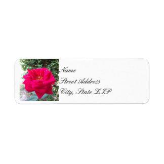 Red Rose Return Address Lables Return Address Label