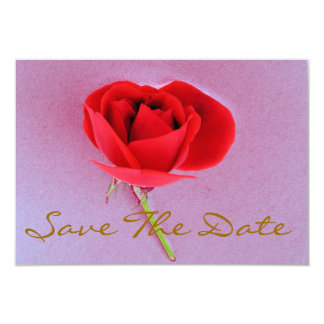 Red rose save the date 9 cm x 13 cm invitation card