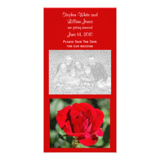 Red Rose Save The Date Photo Cards
