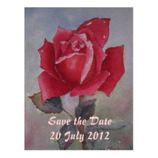 Red rose  Save the Date Post Card