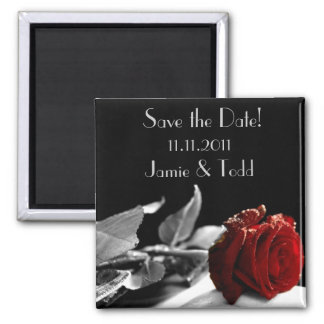 Red Rose Save the Date Square Magnet