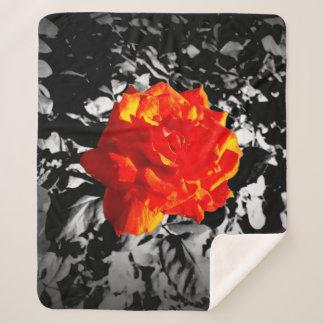 Red rose Sherpa blanket