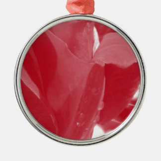 Red Rose Silver-Colored Round Decoration