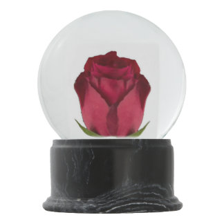 Red Rose Snow Globe