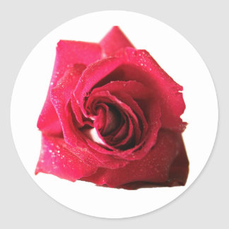 Red Rose Round Stickers