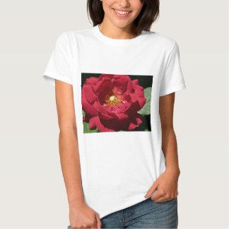 red rose tee shirts