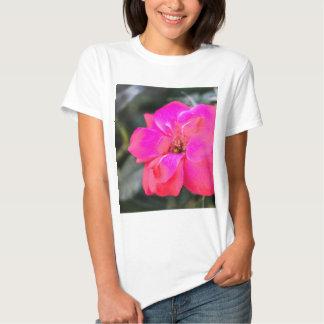 red rose tees