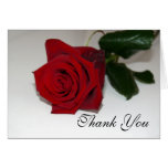 Red Rose Thank You Card