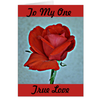 Red Rose Valentine Greeting Card