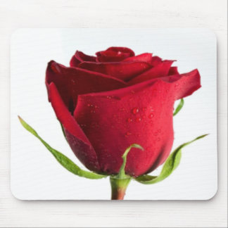 Red Rose with Dew Drops Mousepad