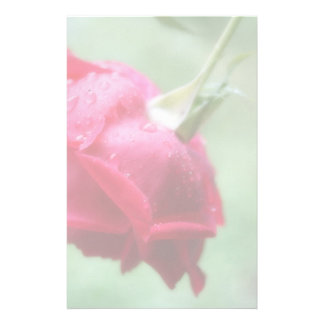 Red Rose With Water Droplets Stationery