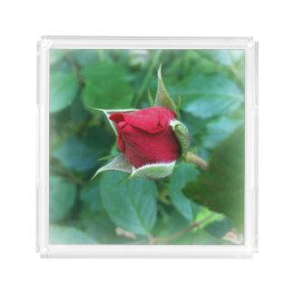 red rosebud acrylic tray