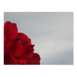 Red Roses Against a Bright Blue Sky Post Cards