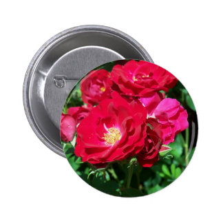 Red Roses Button