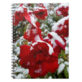 Red roses covered by snow and rime notebooks