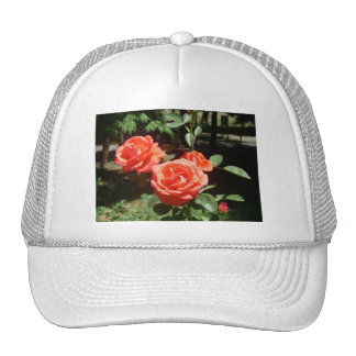 Red Roses Hat