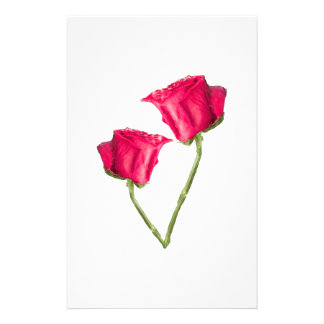 Red Roses Photo Stationery