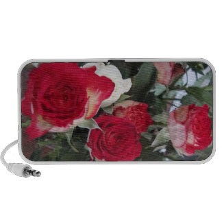 red roses portable speakers