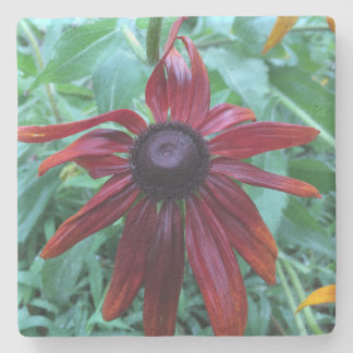 Red Rudbeckia Stone Coaster
