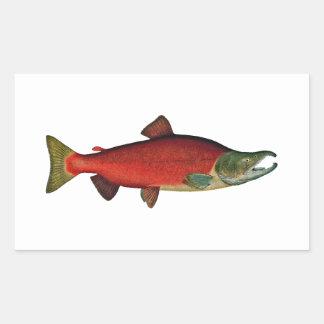 Red Salmon (spawning phase) Rectangular Sticker