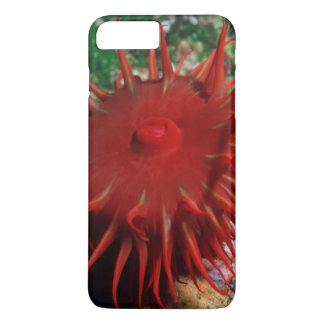 Red Sea Anemone In Pool iPhone 7 Plus Case