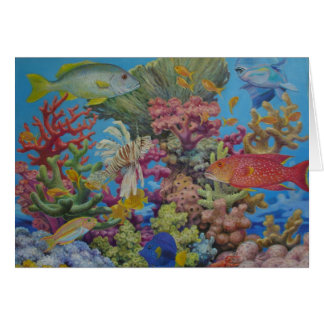 Red Sea Reef Card
