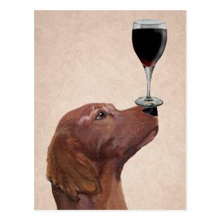Red Setter Dog Au Vin 2 Postcard