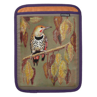 Red-Shafted Flicker iPad Sleeve