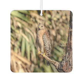 Red Shouldered Hawk in a tree Car Air Freshener